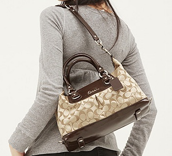 080a3e46f416 Vanity Stanza ❤   5 Coach Ashley Signature Sateen Satchel