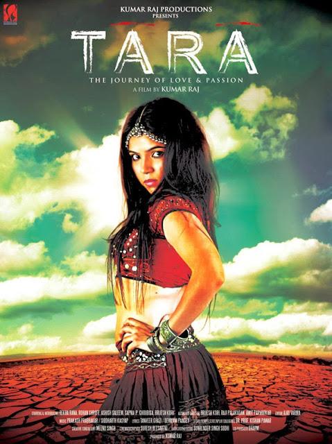 Tara The Journey of Love and Passion 2013 Hindi WEBRip 300mb 480p ESub