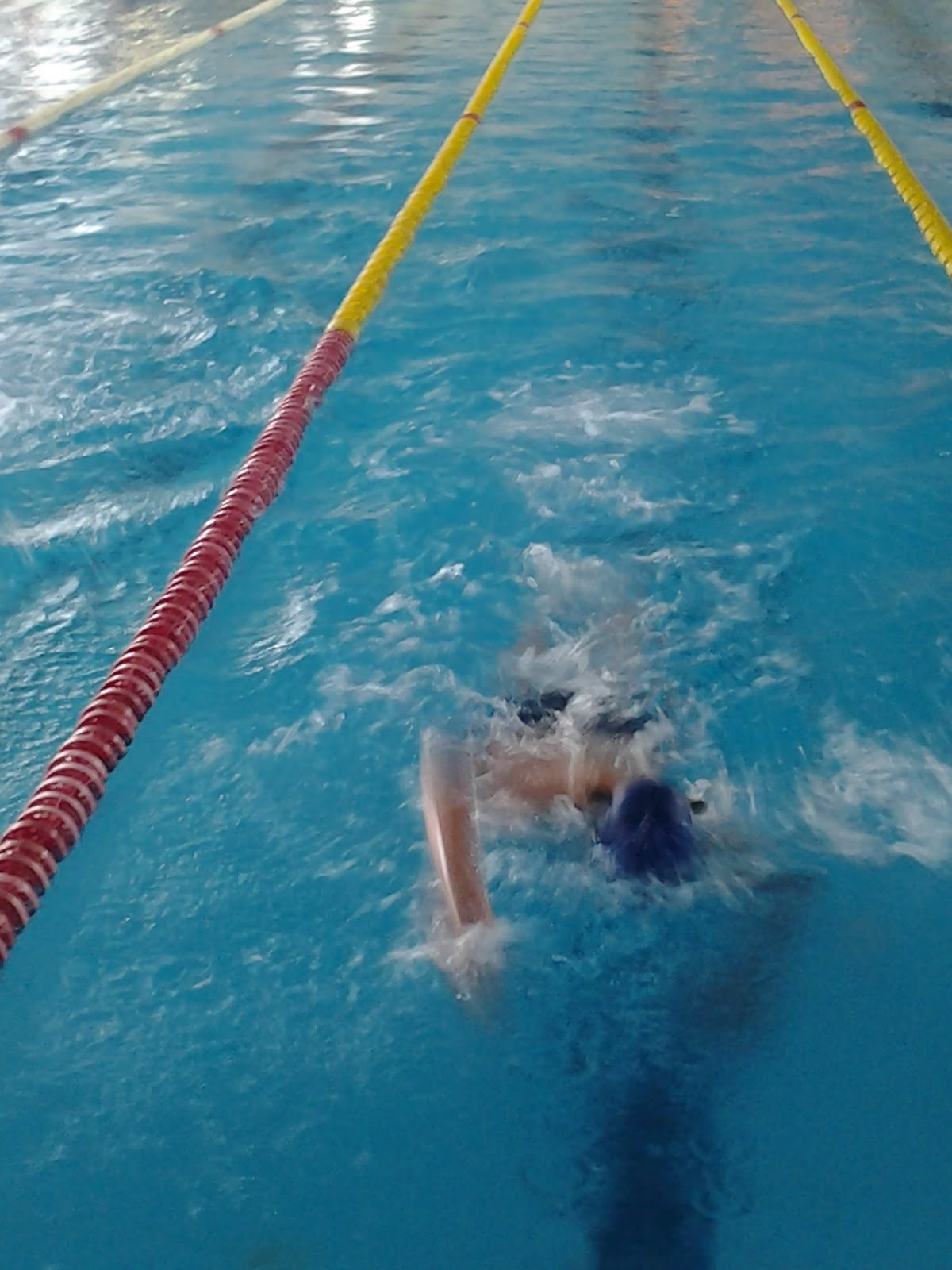 Escuela de natacion piscis 2013 for Piscina climatizada navalmoral