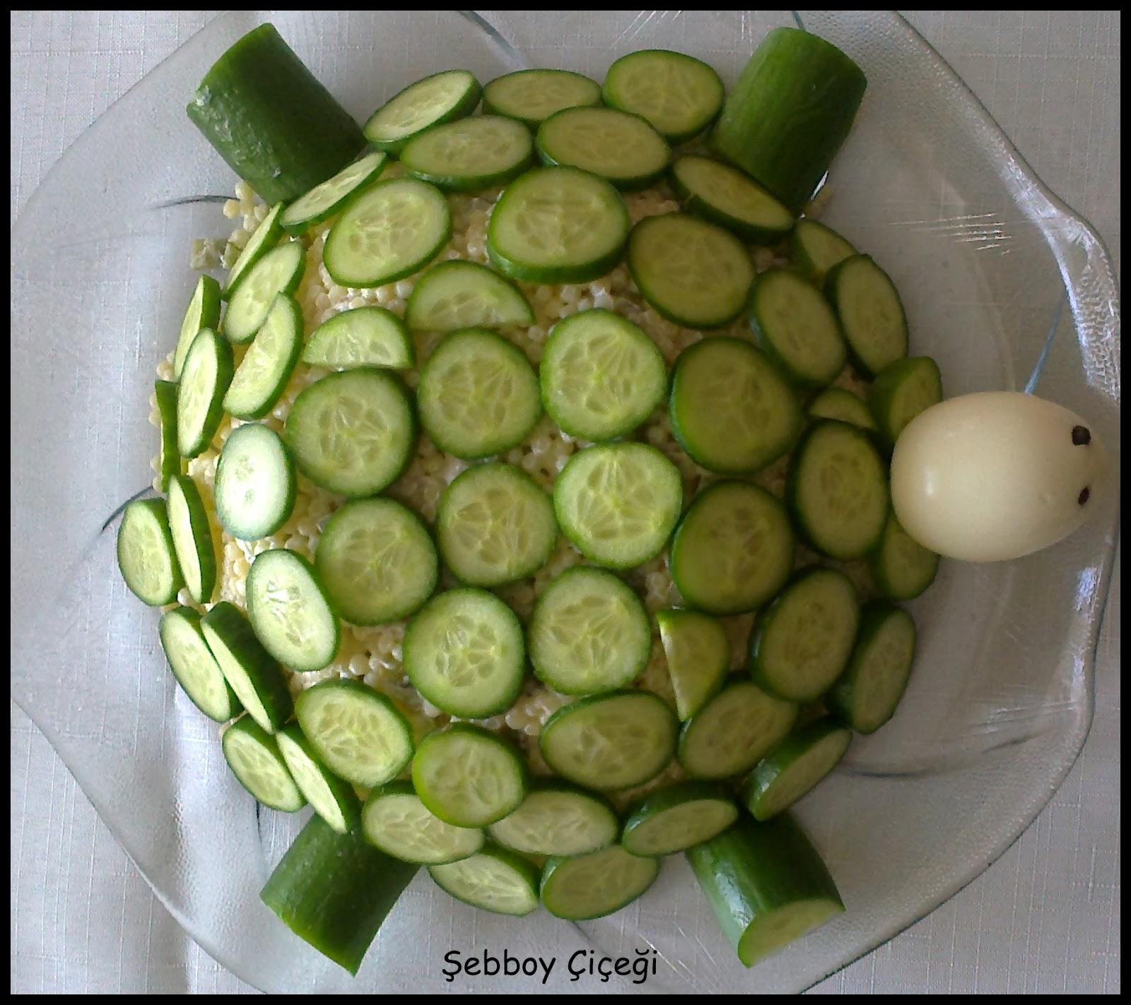 kaplumbağa salata