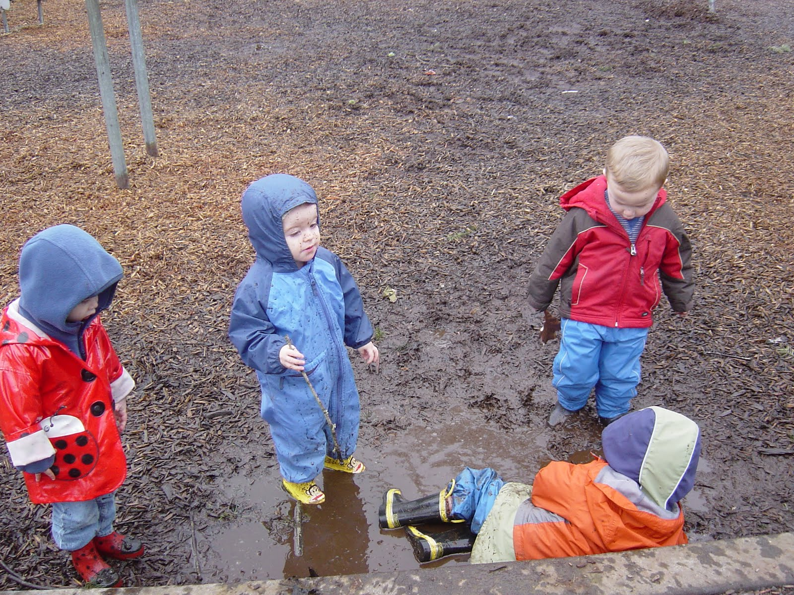 Little Mulberry School We Explore The Puddles March 2011