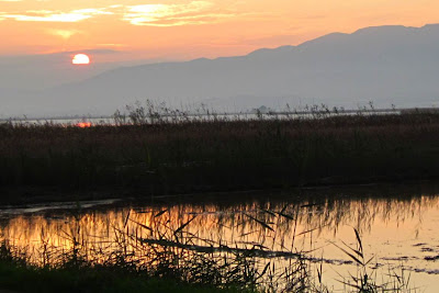 Sunset in L'Encanyissada of El Delta del Ebre