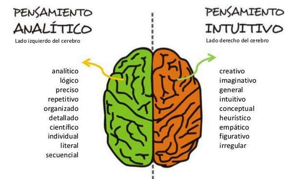 http://4.bp.blogspot.com/-WcjxDoos3pc/UNALBvfl_II/AAAAAAAAA-g/cQOFg4NCH3Q/s1600/Pensamiento+Analitico+_+Pensamimiento+Intuitivo.JPG