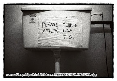 Please Flush After Use
