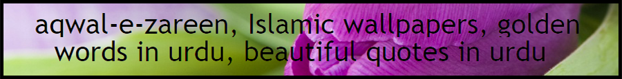 Nice Wallpapers, Free Islamic software, Islamic Wallpapers, Aqwal e Zareen