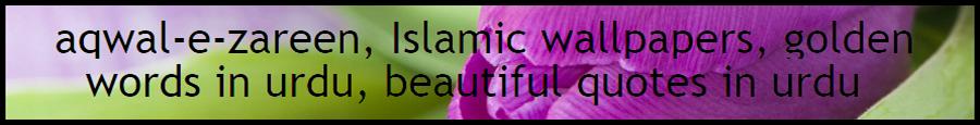 Nice Wallpapers, Free Islamic software, Islamic Wallpapers, Aqwal e Zareen