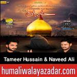 http://www.humaliwalayazadar.com/2015/10/tameer-hussain-and-naveed-ali-nohay-2016.html