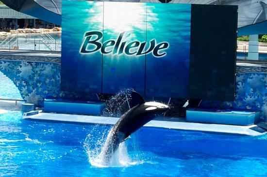 Shamu Show. Believe.