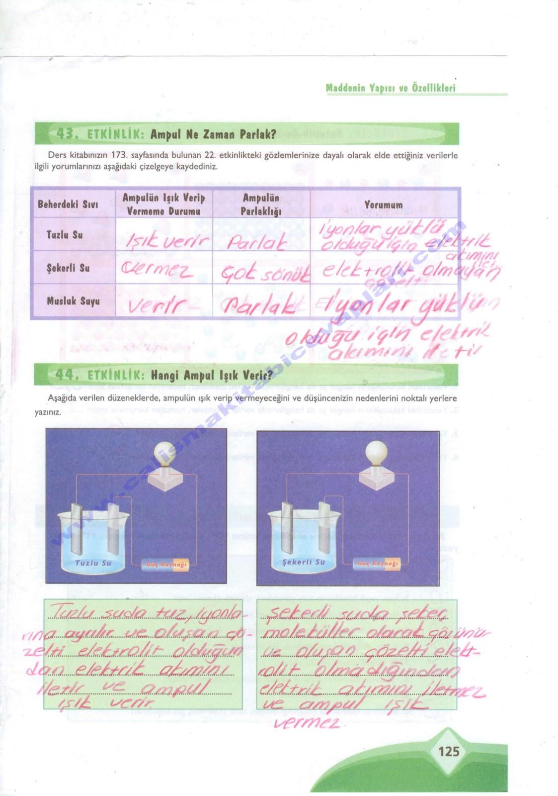 Sınıfekoyay yayınları fen ve teknoloji çalışma kitabı 125