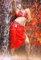 Anushka, hot, navel, photos, collection