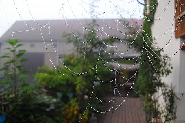 foto by aidagrafix.com
