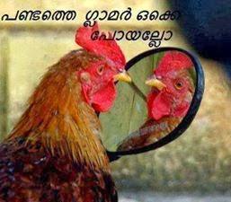 Kozhi funny comment image