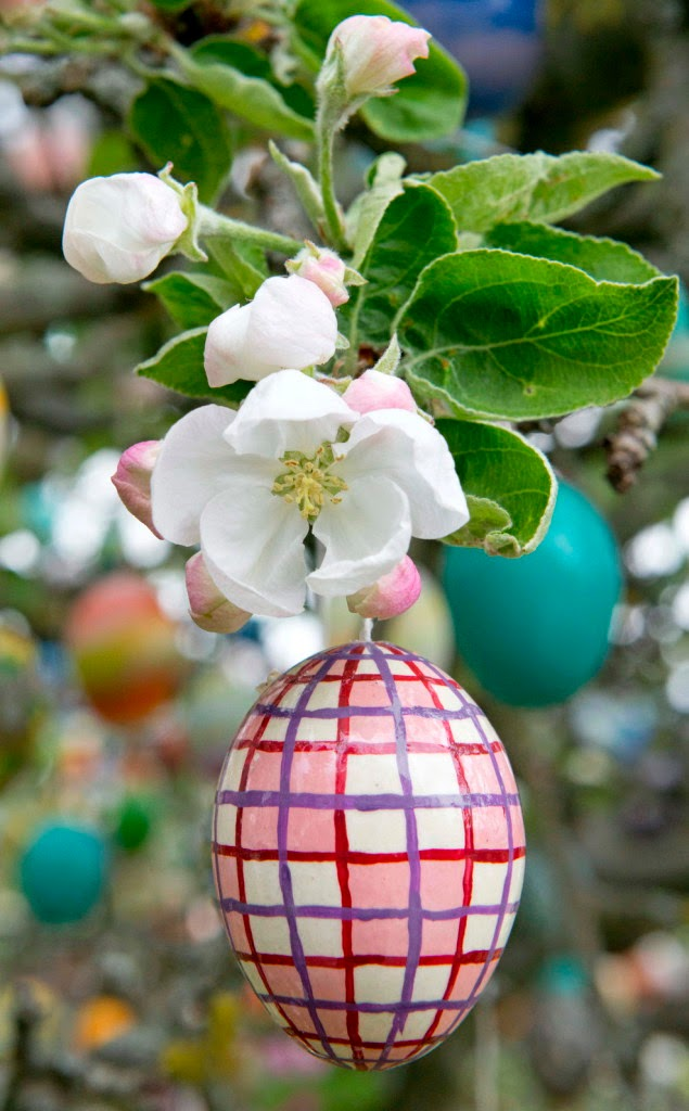 feltámadás, Húsvét, kultúra, Mészely József, vers, ünnep,