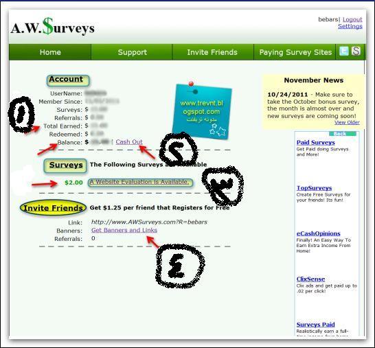 إربح موقع AWSurveys الشرح بالصور اثبات الدفع والمصداقية,بوابة 2013 Image4.jpg