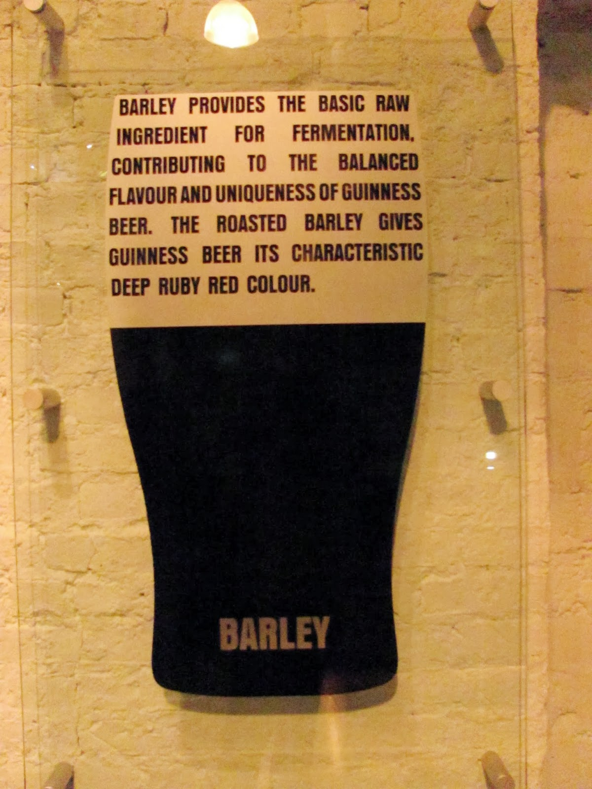 A description of the role of barley in making beer at Guinness Storehouse, Dublin, Ireland