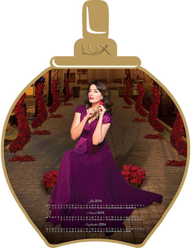 Lux Pakistani star calender 2014