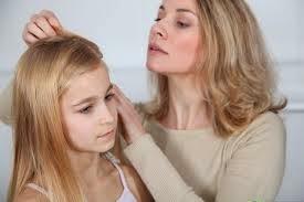 Cara Alami Menghilangkan Kutu Pada Rambut