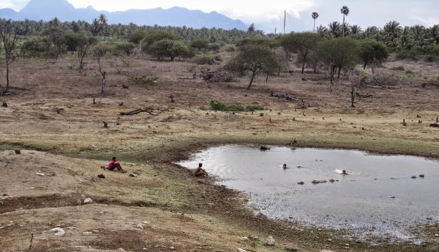 Children playing in leftover dirty water in Vellalore Lake in Summer