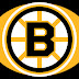 LOGOS BOSTON BRUINS NHL