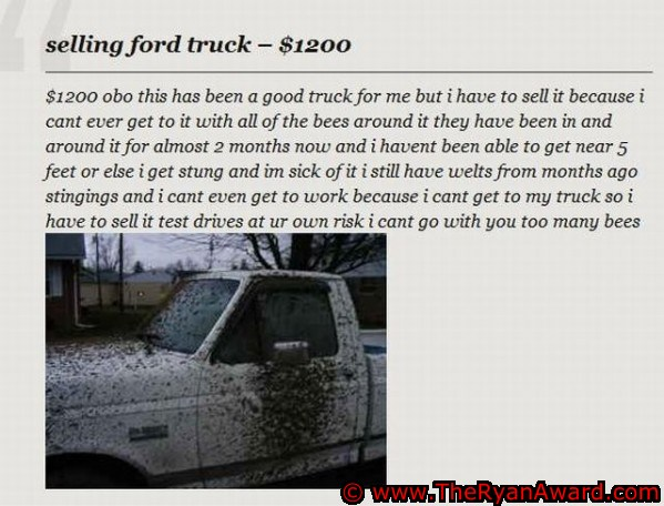 Ford Truck For Sale with BEES!