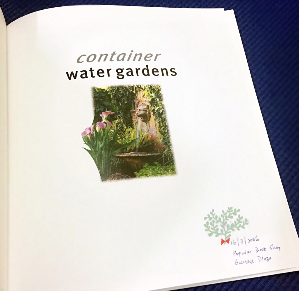 Ah Ying Eh Blog Container Water Garden Diy