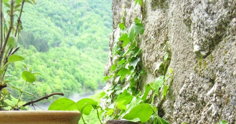 De onzichtbare brug de moesson - Kleine tuin zen buiten ...