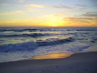 Florida Condo For Rent