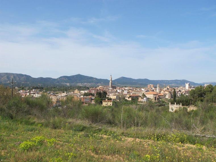 Panoràmica de la ciutat de Valls