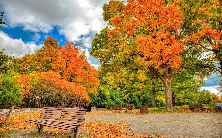 Autumn in Ottawa