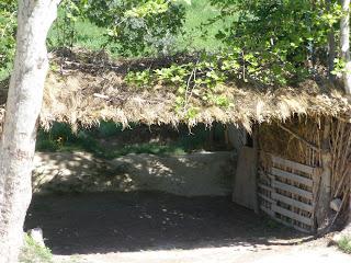 construcción sostenible cañas paja