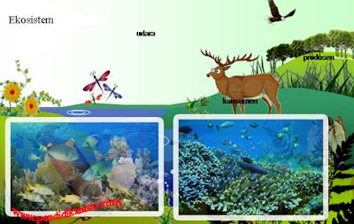 Pengertian Ekosistem Beserta Komponennya