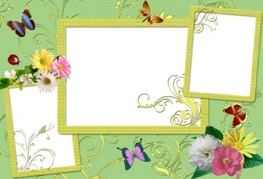 Amelia beautiful photo frame