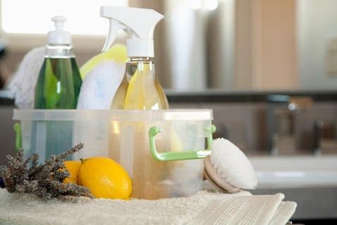 Negocio de Fabricación de Productos de Limpieza