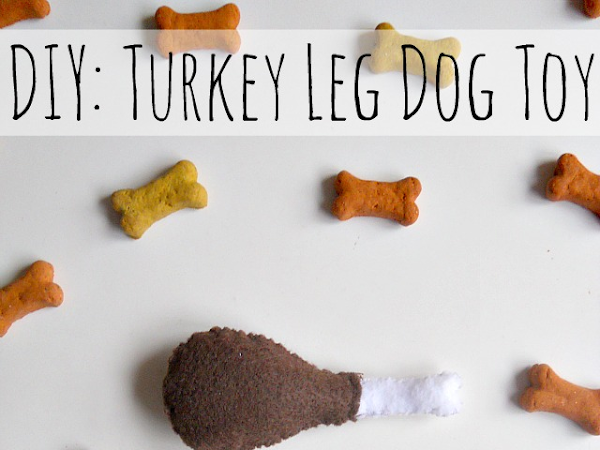 DIY: Turkey Leg Dog Toy + Meet Niblet!