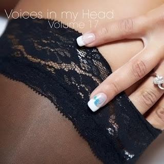Voices%2Bin%2Bmy%2BHead%2BVolume%2B17 Download   VA   Voices in my Head Volume.17 (2011)