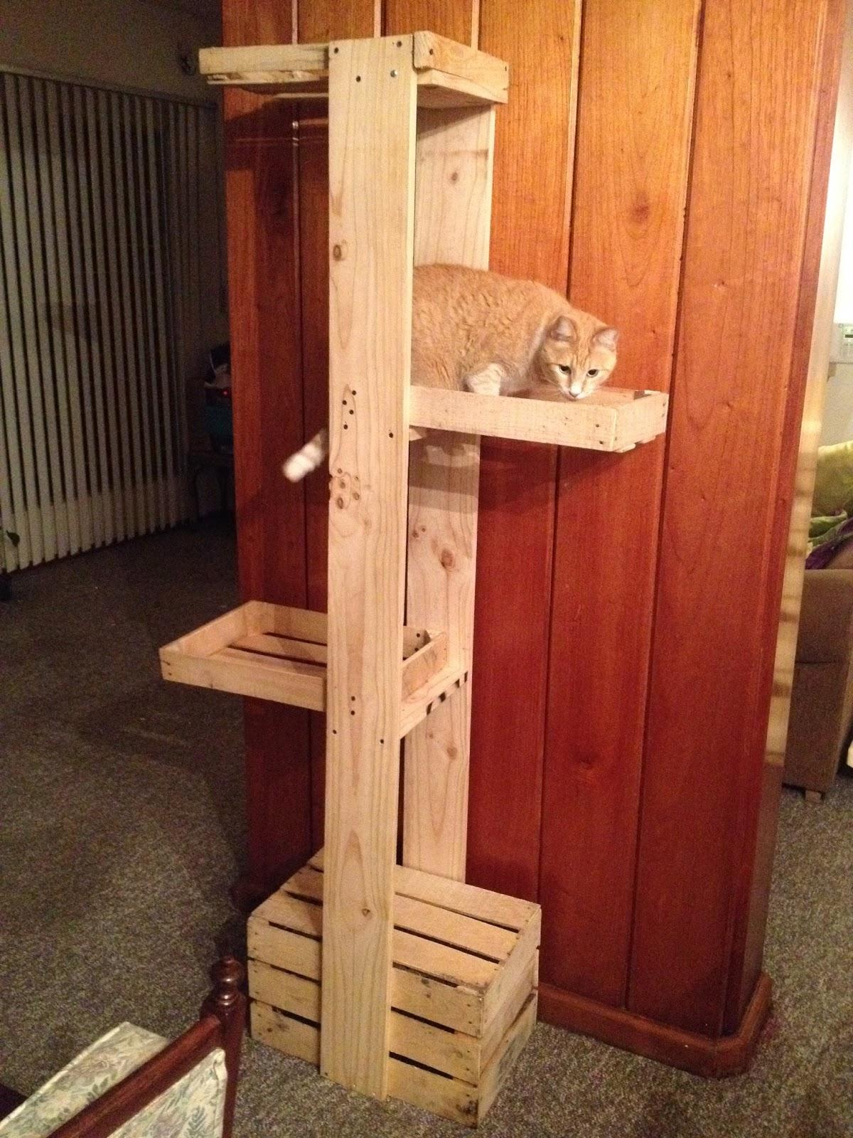 De tiliches chunches y otros triques rbol para gatos con - Casas para gatos de madera ...