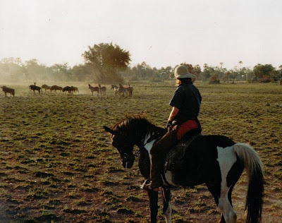 Author Sophie Neville riding with zebra and wildebeeste in the Okavango Delta Botswana