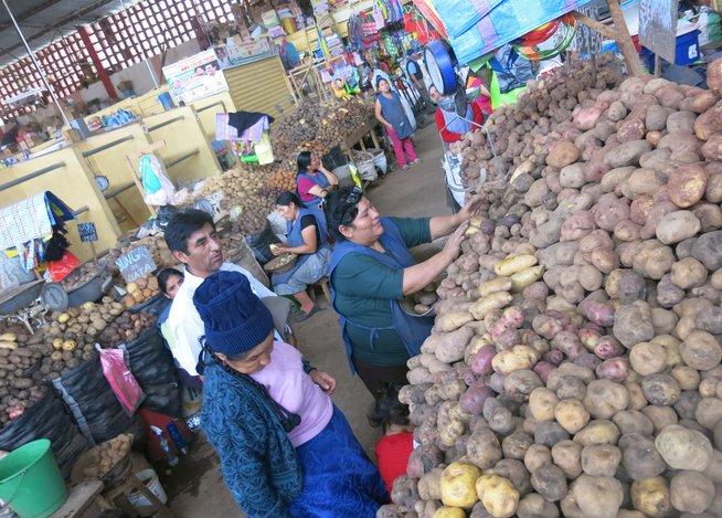 Huamalíes en la Noticia: Día de la Papa: Huánuco es la segunda ...