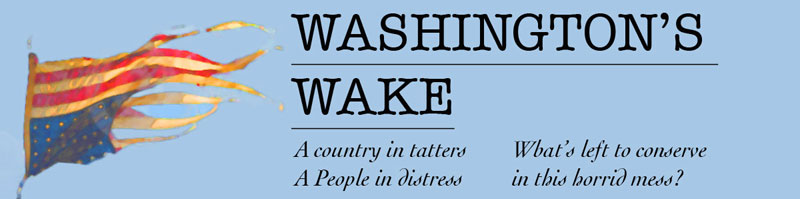 Washington's Wake