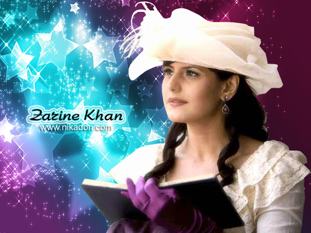 Indian Celebrities Zarine Khan Hot HD Wallpaper 1024x768