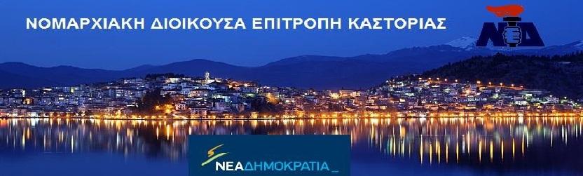ΝΟ.Δ.Ε. ΚΑΣΤΟΡΙΑΣ