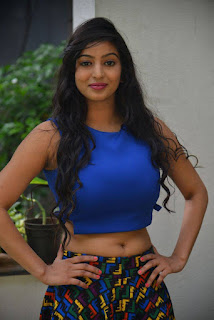 Actress Vaibhavi Joshi  Pictures at Tiger Sultan Teaser Launch  25281)