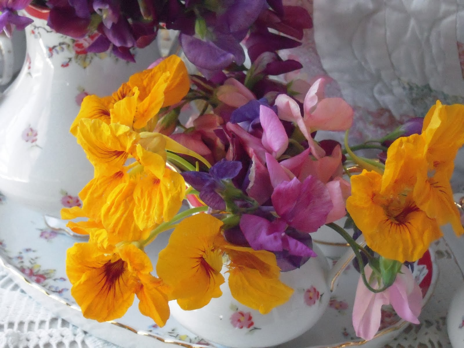 Nasturtiums and Sweet Peas