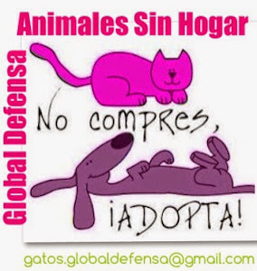 No compres animales, ADOPTA!