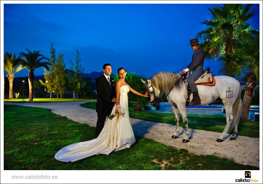 boda-ayuntamiento-de-alicante-yeguada-Lagloria-17-fotógrafo-Calixto-Foto