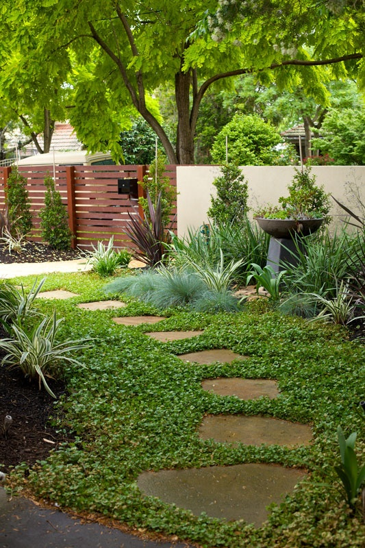 diy garden path with random shaped flagstones and ground cover plants