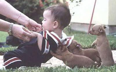 bayi lucu019 Gambar Lawak: Mengapa Lelaki Tidak Sesuai Menjadi Pengasuh Anak?
