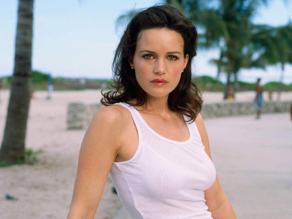 http://4.bp.blogspot.com/-WjdY0ToMRq4/TYmMrU0_3VI/AAAAAAAALak/f8HzGbFgxlI/s1600/American_actress_Carla_Gugino_hot_wallpapers%252B%2525283%252529.jpg