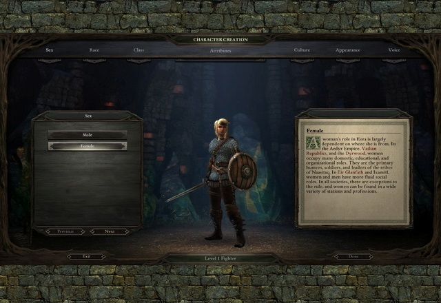 Pillars of Eternity PC Games Gameplay