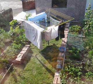 A garden from an upstairs window.  A rotary washing line with sheets and trousers drying.  Vegetable beds to right and left of a grass patch.  The wall of a garage or shed at the end of the garden.